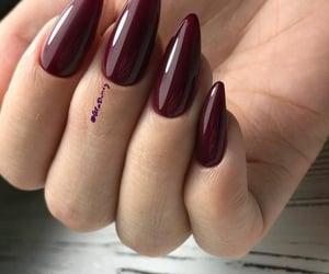 burgundy stiletto nails image