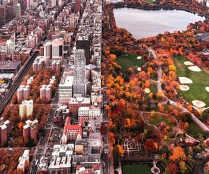 autumn, Central Park, and city image