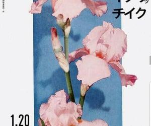 japanese and magazine image