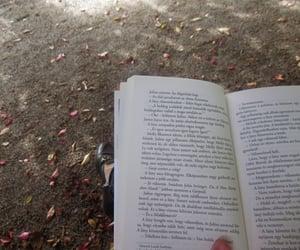 autumn, Sunday, and book image