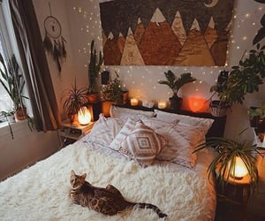 cat, bedroom, and room image