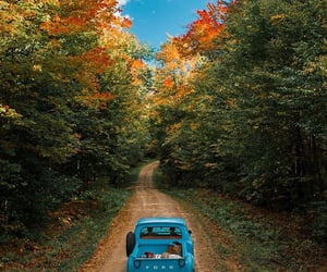 autumn, beautiful, and cars image