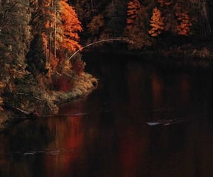 autumn, background, and nature image