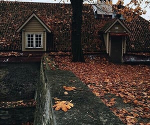 aesthetic, autumn, and fashion image
