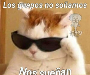 fragmentos, frases, and memes image