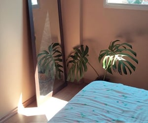 aesthetic, home, and bedroom image