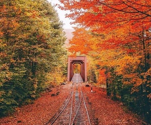 autumn, bridges, and colorful image