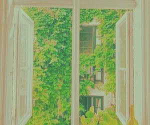 aesthetic, window, and beautiful image