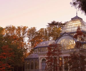 autumn, fall, and architecture image