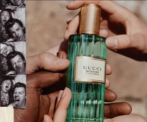 gucci, perfume, and styles image