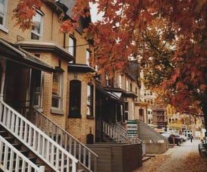 autumn, orange, and season image
