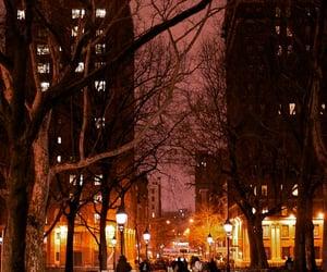 rain, city, and lights image