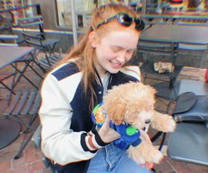 dogs, st, and maxine mayfield image