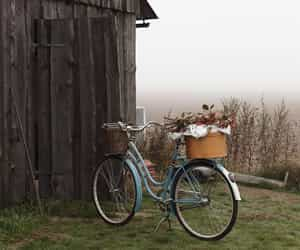 autumn, barn, and bicycle image