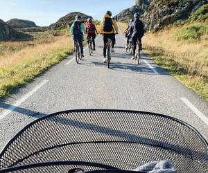 bike, road, and group image