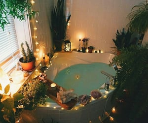 home, plants, and bath image