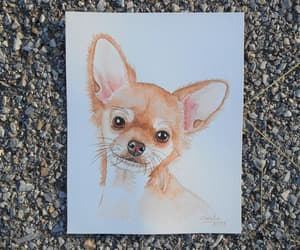etsy, pet portrait, and watercolor portrait image