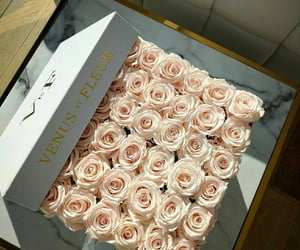 flowers, roses, and luxury image