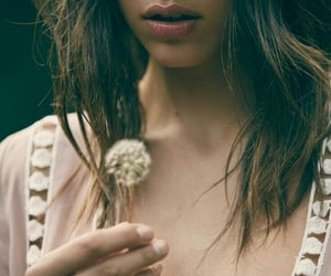 dandelion, flower, and fashion image