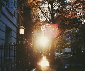sun, autumn, and city image