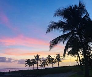 hawaii, wallpaper, and Honolulu image