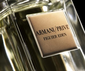 Armani, Giorgio Armani, and fragrance image
