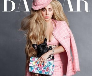 bazaar, magazine, and magazines image