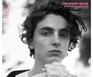 beautiful boy, call me by your name, and timothee chalamet image