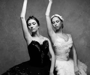ballerina, monochrome, and Swan image