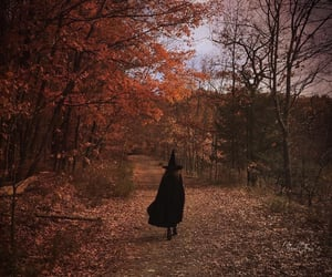 witch, Halloween, and autumn image