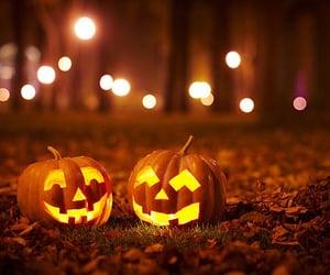 autumn, pumpkin, and citrouille image