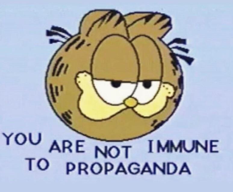 propaganda image