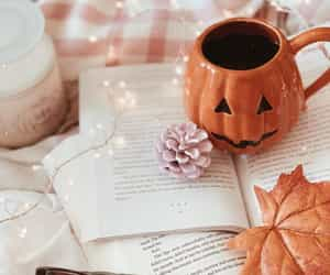 autumn, autumnal, and book image