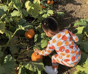 cute baby, pumpkin patch, and stormi image