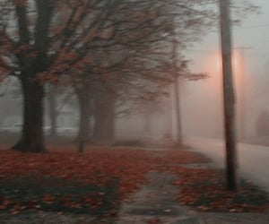 atmosphere, autumn, and cold image