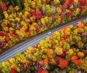 aerial photography, autumn, and road image
