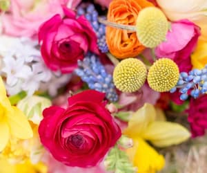 bouquet, colors, and floral image