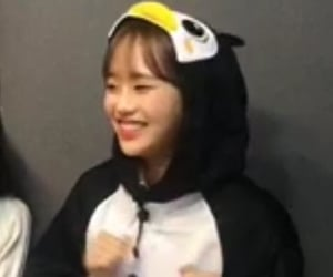 icon, chuu, and lq image
