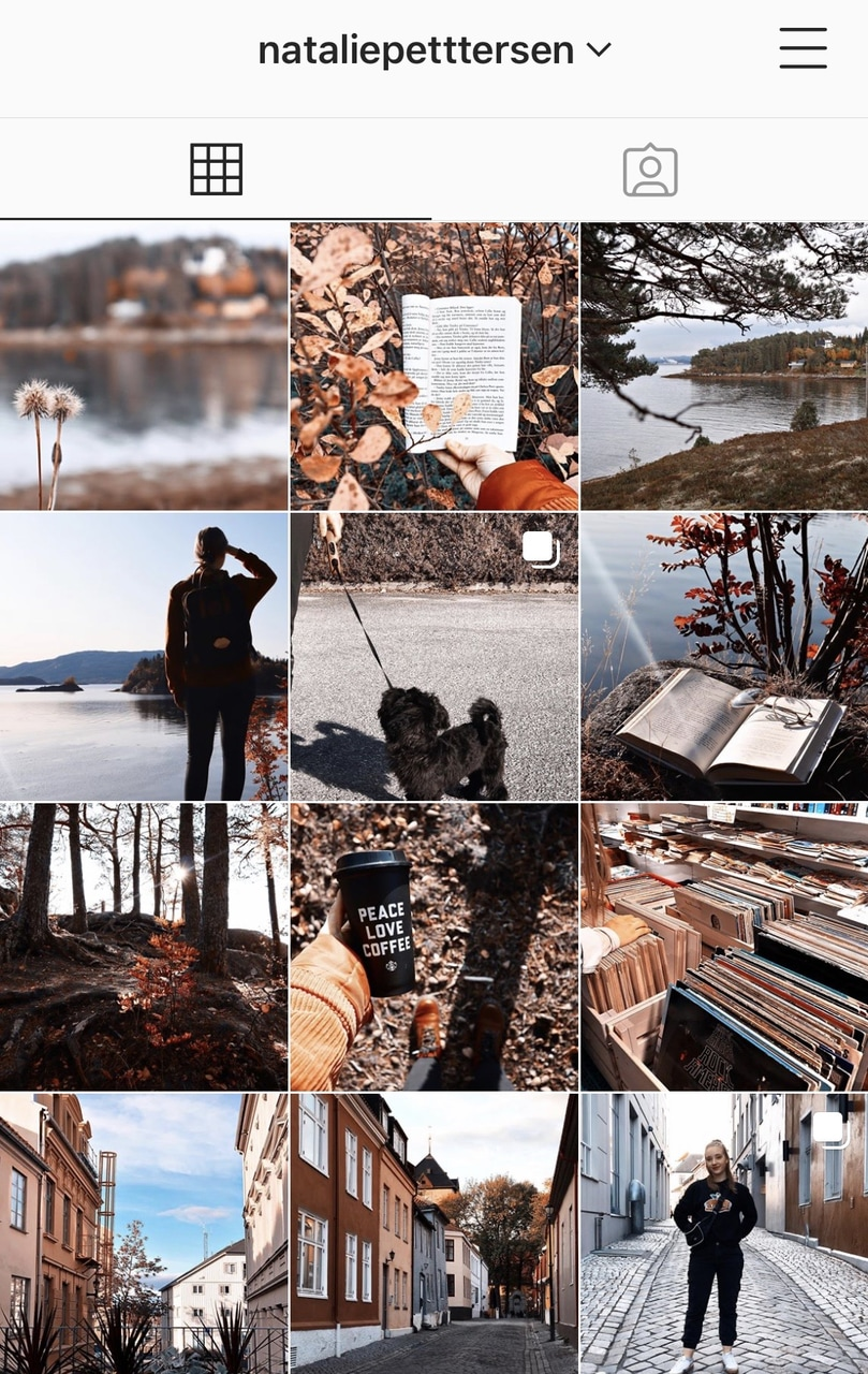 aesthetic, fall, and life image