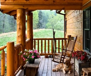 cabin, dog, and home image