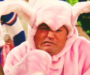 bunny, chandler, and fun image