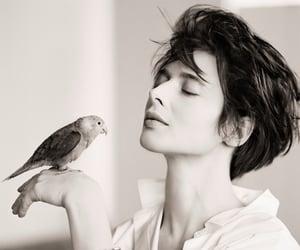 bird and Isabella Rossellini image
