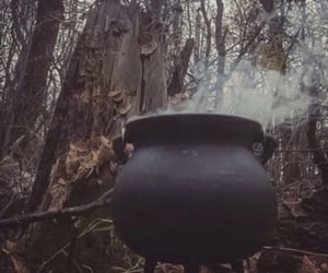 cauldron, Halloween, and witch image
