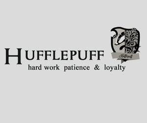 harry potter, header, and hufflepuff image