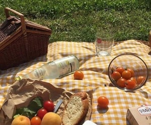 aesthetic, fruit, and picnic image