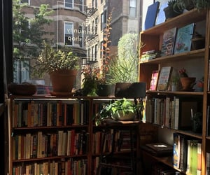 books, library, and plants image