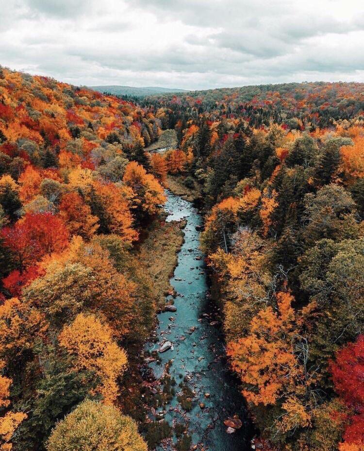 Autumn Falls 7