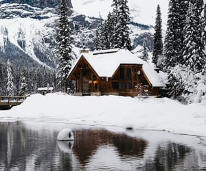 cabin, forest, and frozen image