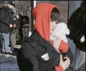 kpop, jinyoung, and park jinyoung image