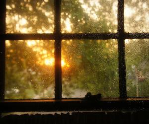 sun, window, and yellow image
